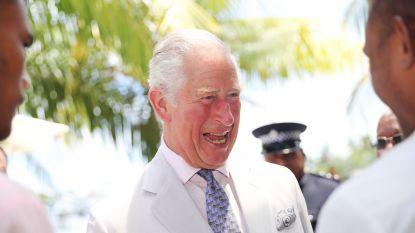 Wordt Charles binnen 18 maanden koning? Britten zijn overtuigd van wel, want de Queen wil op pensioen