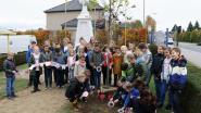 Schoolkinderen planten vredesboom aan oorlogsmonument