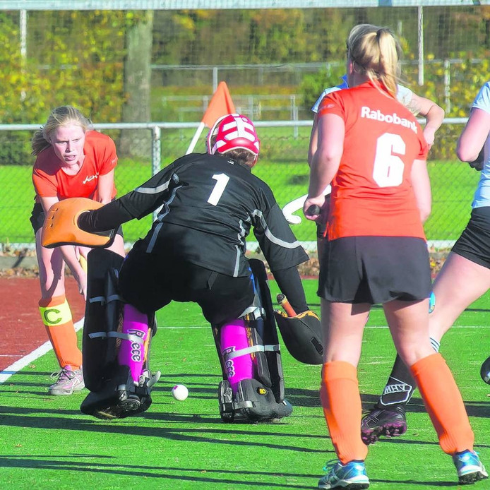 HCHN heeft dringend behoefte aan meer speelruimte op sportpark Gagelman in Nijverdal.
