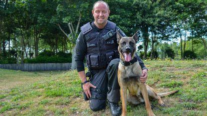 Hartverwarmend: politieman Bjorn werkt met nieuwe patrouillehond nadat Drago en Blue stierven bij zwaar verkeersongeval