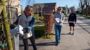 """Tientallen vrijwilligers posten burenkaartjes: """"Al 265 straten van de 280 bedeeld"""""""