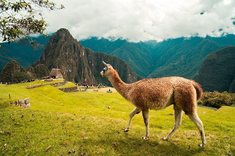 Foto ter illustratie van Machu Picchu.