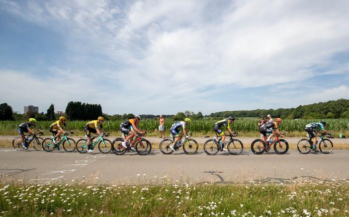De kopgroep van de mannenwegwedstrijd op de Geertjesweg in Wageningen.