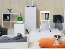 Ikea lanceert eerste lijn voor katten en honden