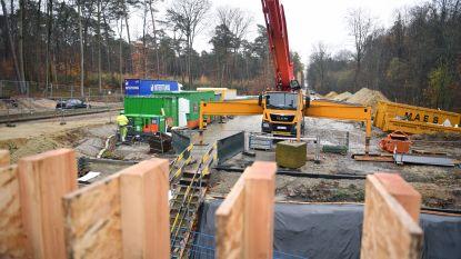 Limburgse bouwsector floreert, maar buitenlandse concurrentie blijft zwaar