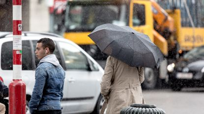 Krokusvakantie gaat zwaarbewolkt en regenachtig van start