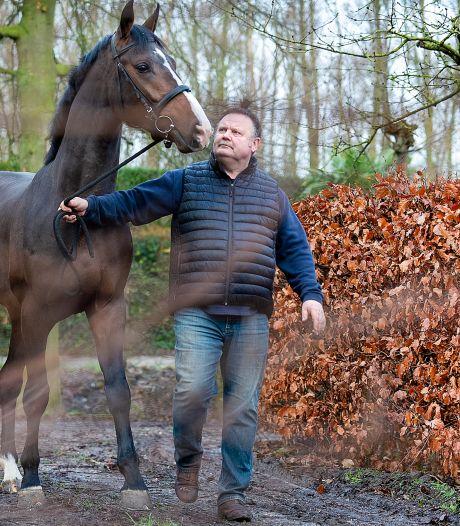 'Het is heel taai voor iedereen in de paardensport, vooral de verkoop ligt op zijn kont'
