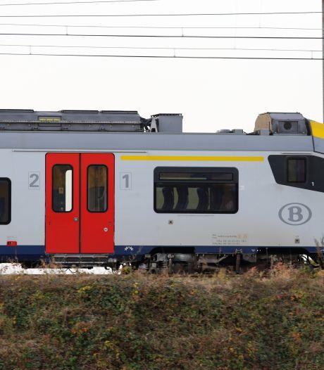Deux chevaux heurtés par un train à Courrière, le trafic ferroviaire interrompu