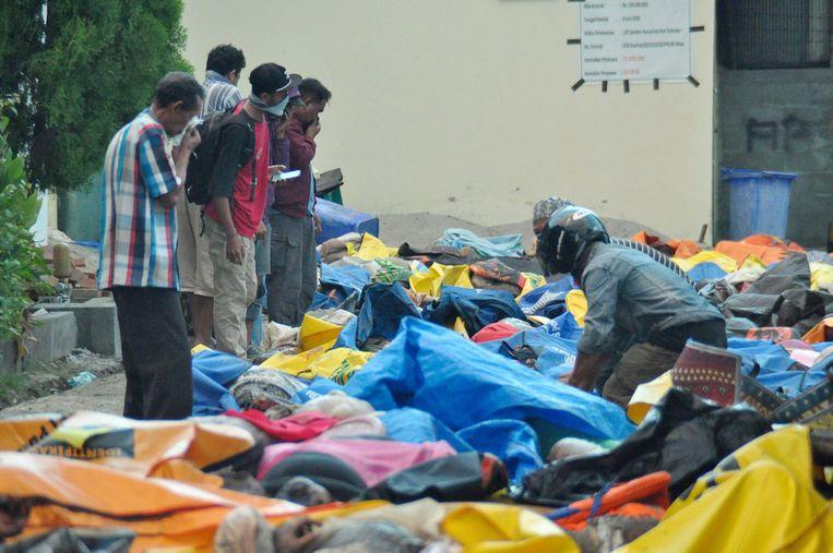 Lichamen worden verzameld bij het ziekenhuis van Palu, voordat zij in massagraven worden begraven. Beeld AFP