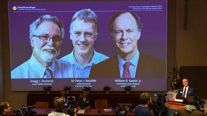 Nobelprijs Geneeskunde voor twee Amerikanen en Brit