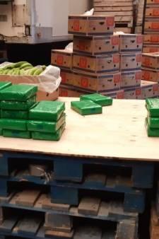 Pand in Hoogerheide waar 72 kilo cocaïne tussen bananen zat moet jaar dicht: 'Eén harde lijn trekken'