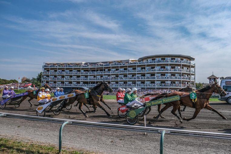 De nieuwe drafren in dubbele sulky: de Pro-Am Horse Race for Charity, voor goeie doelen.