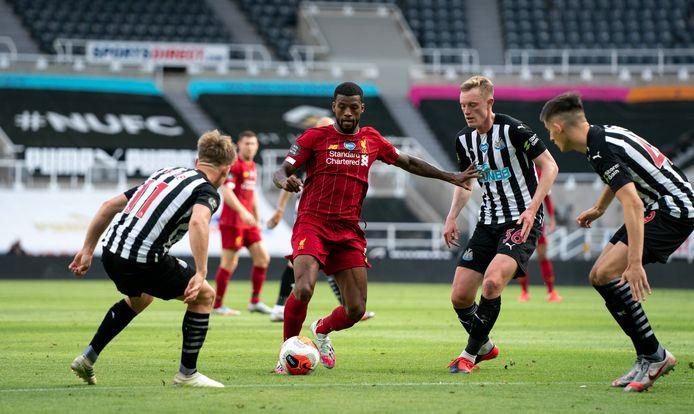 Georginio Wijnaldum probeert een opening in te vinden tussen drie spelers van Newcastle United.