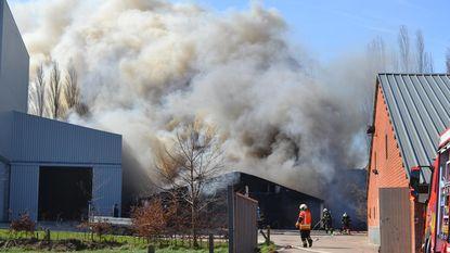 1.500 biggen overleven stalbrand niet