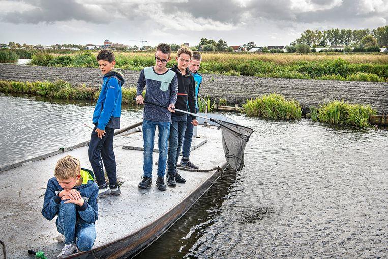 Vissen op rivierkreeft.  Beeld Guus Dubbelman / de Volkskrant