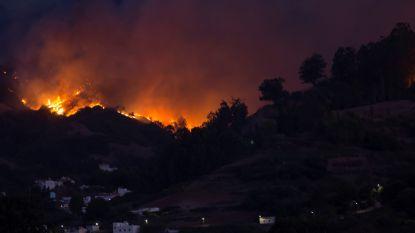 Al vijfduizend evacuaties wegens bosbranden op Gran Canaria