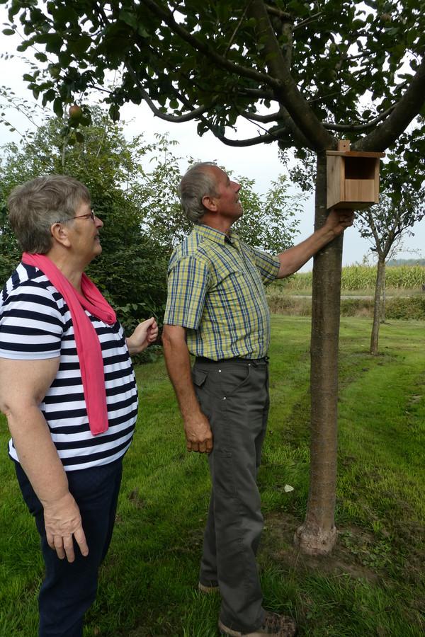 Ans en Henk Schoenmakers kijken of een van de nieuwe nestkastjes in hun hoogstamfruitboomgaard past.