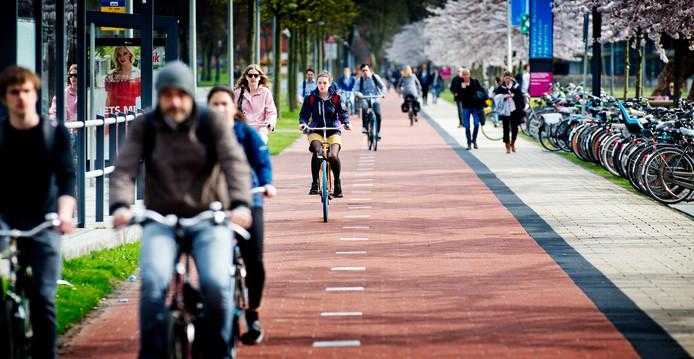 Fietsers op drukke fietspaden in Delft.