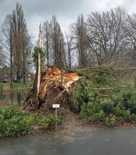Storm houdt stevig huis in Zuidoost-Brabant