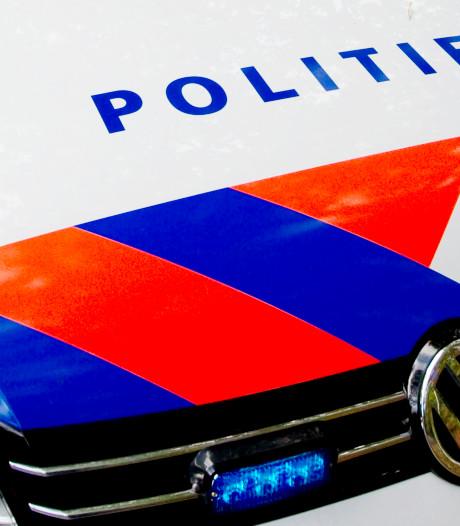 Dronken fietser richt spoor van vernielingen aan in Stadshagen