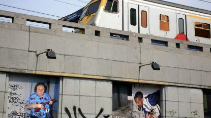 Lichte hinder op Noord-Zuidverbinding nadat trein door rood rijdt