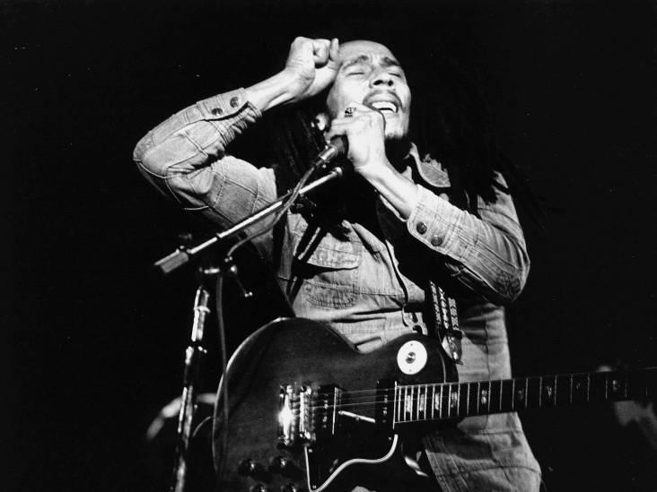 Misschien was de Blanke Bob Marley net geland in de realiteit