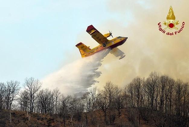 De brandweer in de weer met de bosbrand.