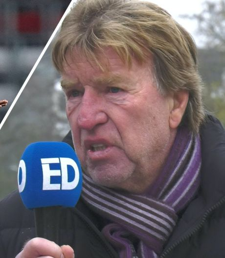 Elfrink & De Mos: 'PSV-revelatie Cody Gakpo moet geselecteerd worden voor het grote Oranje'