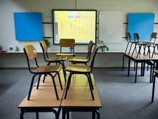 Het Streek in Ede ontslaat veroordeelde nep-docent