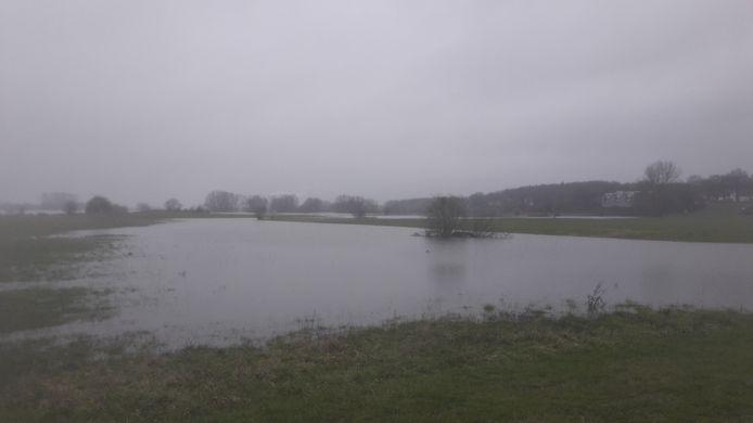 De Veerwei bij Rhenen staat voor een deel onder water. Ook de Palmerswaard op de achtergrond staat deels blank.