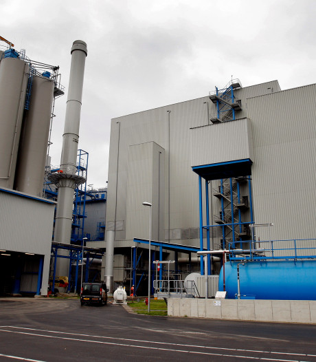 Eerste Kamer wil af van subsidie op biomassa