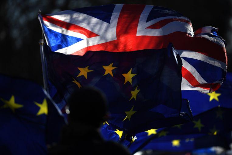 Brexitdemonstranten bij het parlementsgebouw in Londen, 17 januari 2019. Beeld EPA