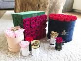 De rozen van Michelle-Fleur zijn een hit in Amerika, met dank aan Catelynn van Teen Mom