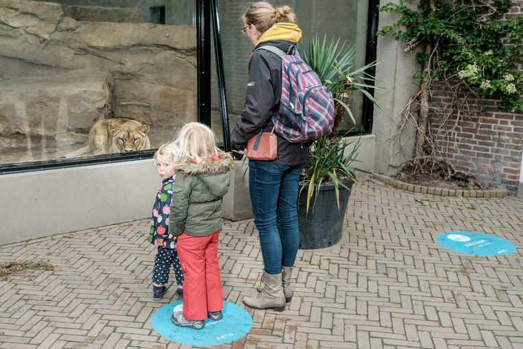Wat leer je kinderen met het tentoonstellen van dieren in betonnen bakken?  Beeld Jakob Van Vliet