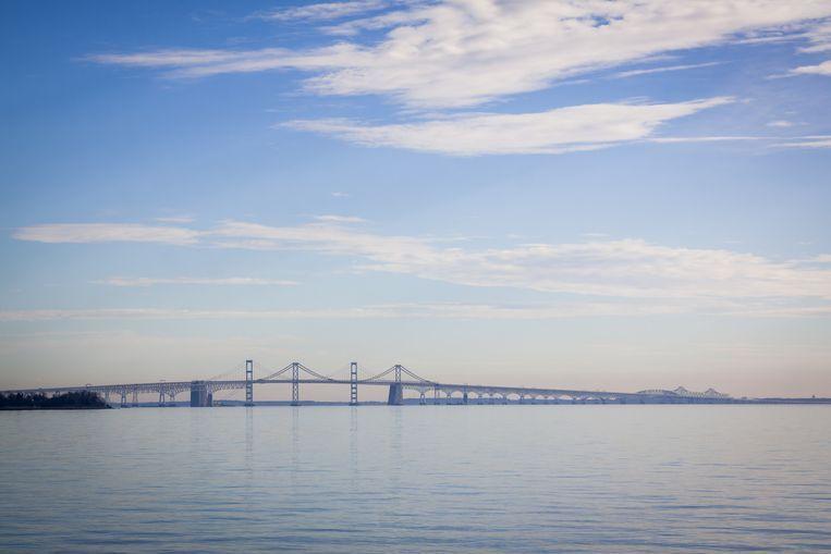 Chesapeake Bay, een baai die uitmondt in de Atlantische Oceaan. Beeld Shutterstock