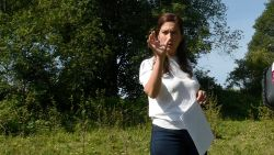 """Geen sprake van illegale boomkap"" door Vlaamse overheid"