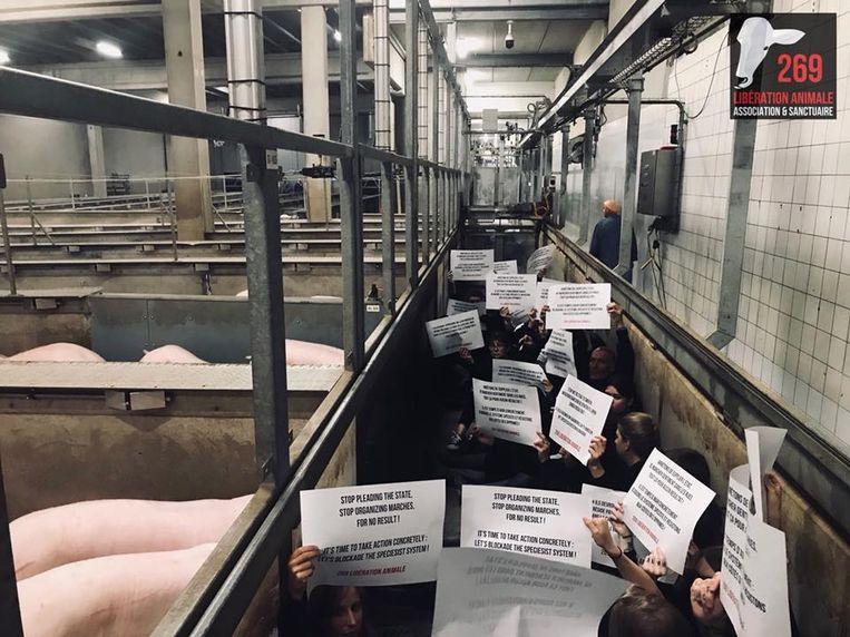 Een vorige actie aan het slachthuis van Franse activisten verliep niet zo vreedzaam.