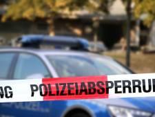 En Allemagne, la fête d'anniversaire d'une jeune fille prend des allures de Projet X