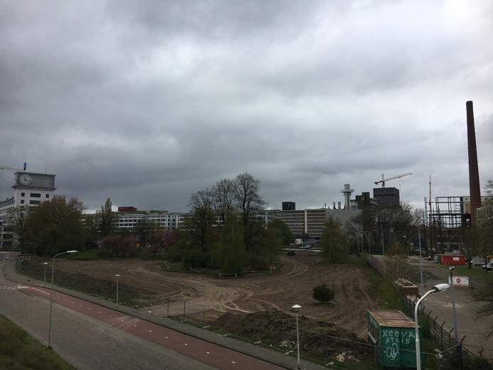 Het Gloeilampplantsoen - hier gezien vanaf station Strijp-S -is ongeveer voor de helft veranderd in een aangeharkte vlakte met zand. Alleen de bomen staan nog overeind.