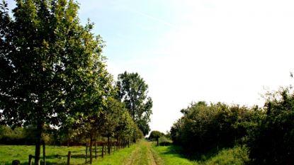 Nieuw wandelnetwerk in Poelberg-Meikensbossen