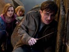 Kasteel in Gelderland omgetoverd tot walhalla voor Harry Potter-fans