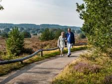Van 3500 naar 50.000 hectare: hoe groter Nationaal Park Sallandse Heuvelrug de economie een duwtje moet geven