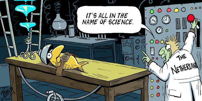 Cartoon in de campagne van de Franse actiegroep Bloom tegen de pulsvisserij.