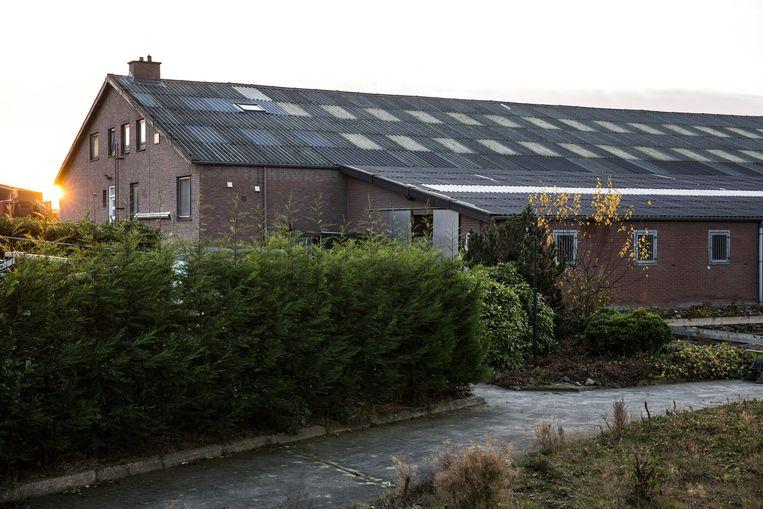 Het dak van Geraedts' buren, nu nog met asbest. Beeld Maikel Samuels