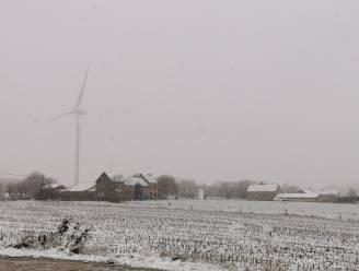 Eerste sneeuw in Halle legt flinterdun tapijt over de velden