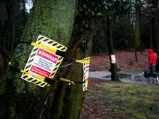 Symbolische boomkap in Sonsbeekpark