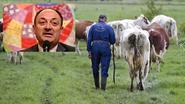 Russische boycot rampzalig voor melkprijzen