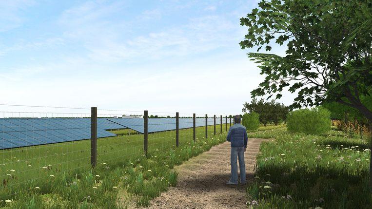 Algemene impressie van 3D-animaties van zonneweides, niet bij Valthermond.  Beeld TRBEELD