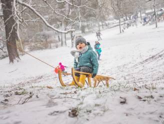 Eén dag sneeuw, daar profiteren we massaal van