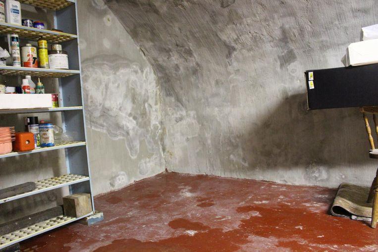 De keldermuur - en vloer staan boordevol schimmel.